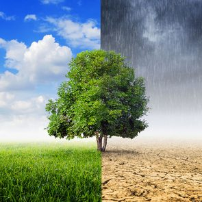 Voici comment les changements climatiques affectent votre santé.