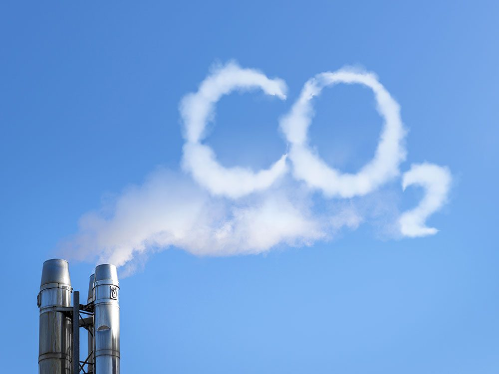 Pour réduire votre empreinte carbone, agissez en soutenant des groupes d'action et en vous exprimant.