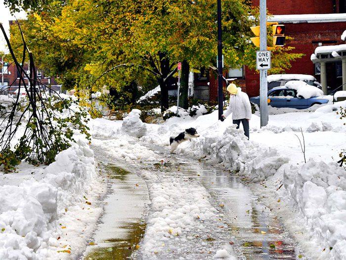 Près d'un demi-million de gens ont été privés d'électricité après la chute de 60 cm de neige sur la ville de Buffalo un vendredi 13.