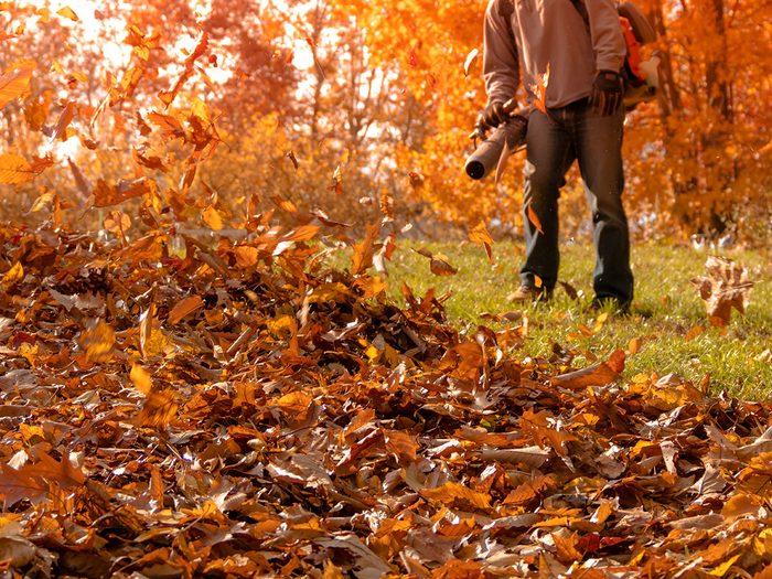 Vous soufflez vos feuilles sur la pelouse du voisin.