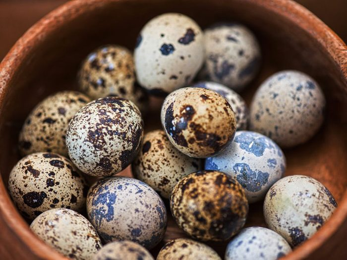 Acheter une quarante œufs de caille avec 1$.
