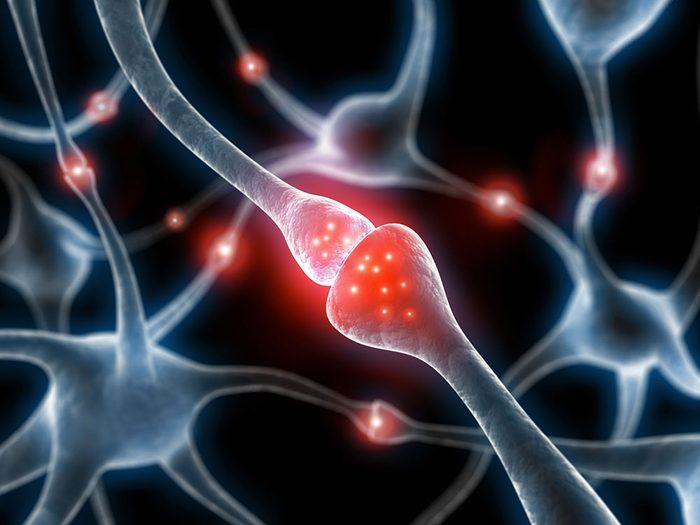 Les crises d'épilepsie sont causées par un dysfonctionnement des signaux électriques dans le cerveau.