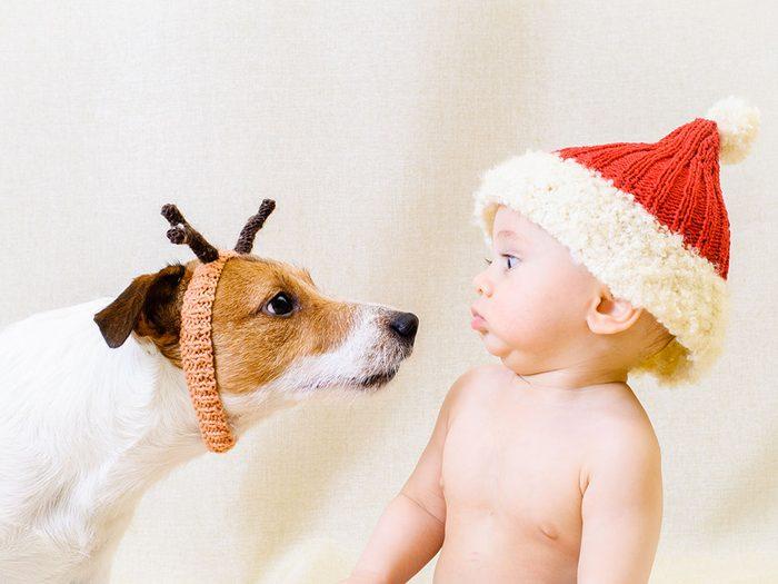 Photos hilarantes: chien de Noël et bébé à tuque.
