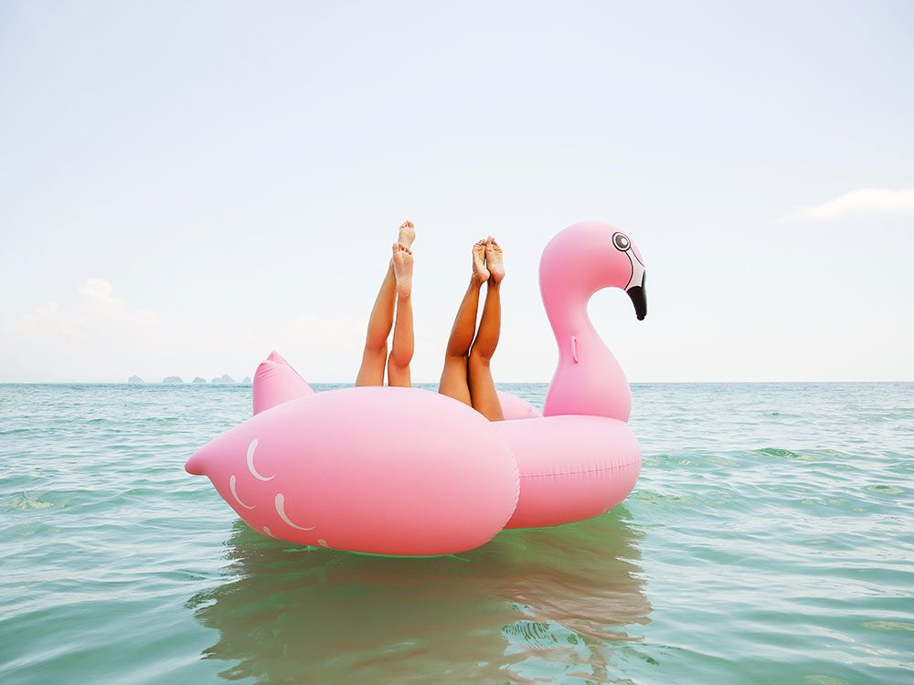 Photos hilarantes: flamant rose au fil de l'eau.