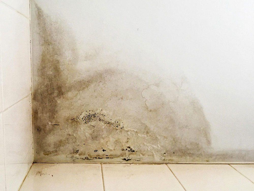 D'après les plombiers, les dégâts d'eau coûtent cher.