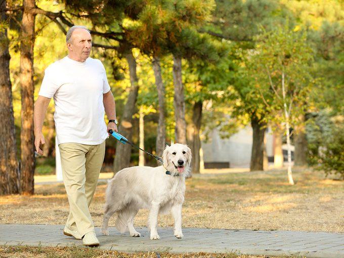 Attention aux risques de fractures quand vous promenez le chien.