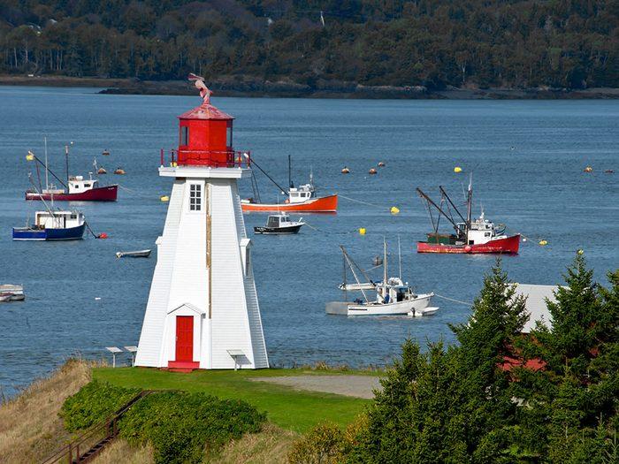 C'est à Campobello au Nouveau Brunswick que Joe a eu ses premiers contacts avec les baleines et a commencé à les sauver.