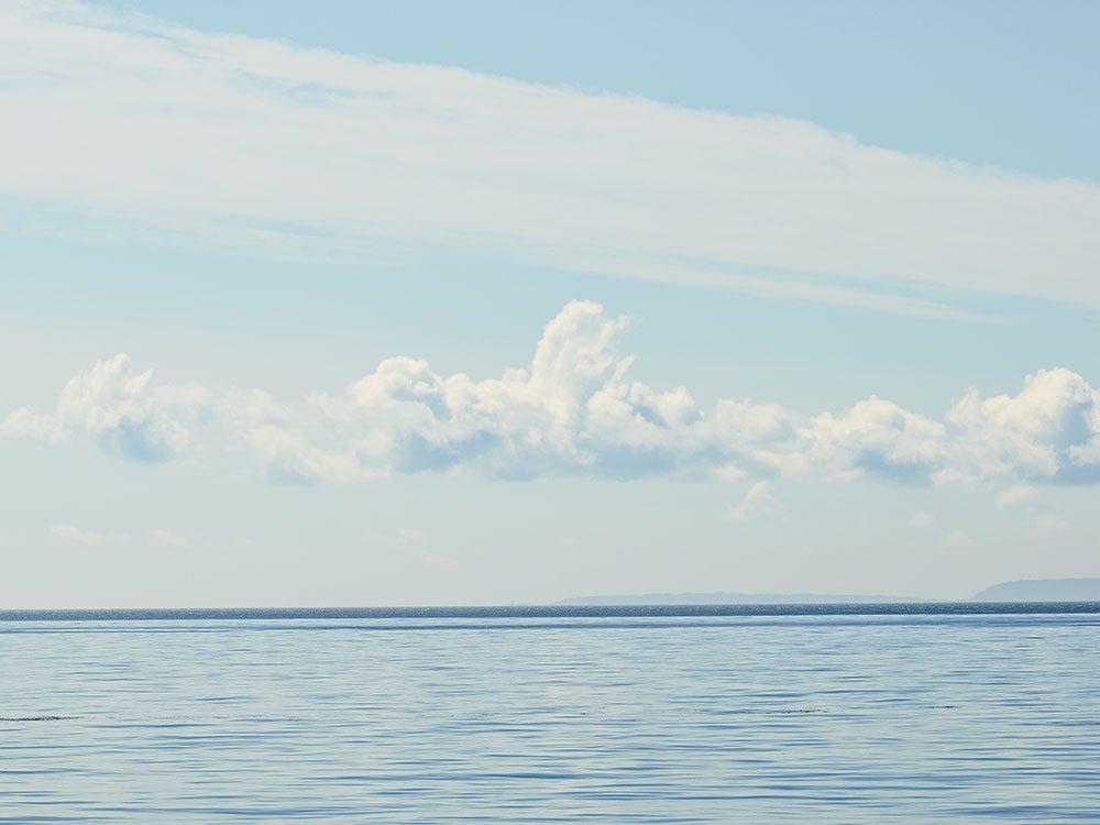 Le jour de la mort de Joe Howlett, l'homme qui sauvait les baleines, avait parfaitement commencé.