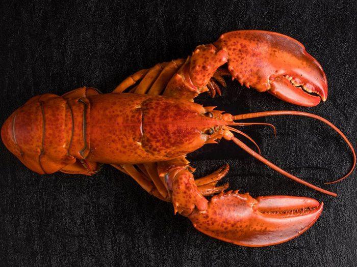 Le homard est l'un des aliments populaires maintenant, mais pas il y à 100 ans!