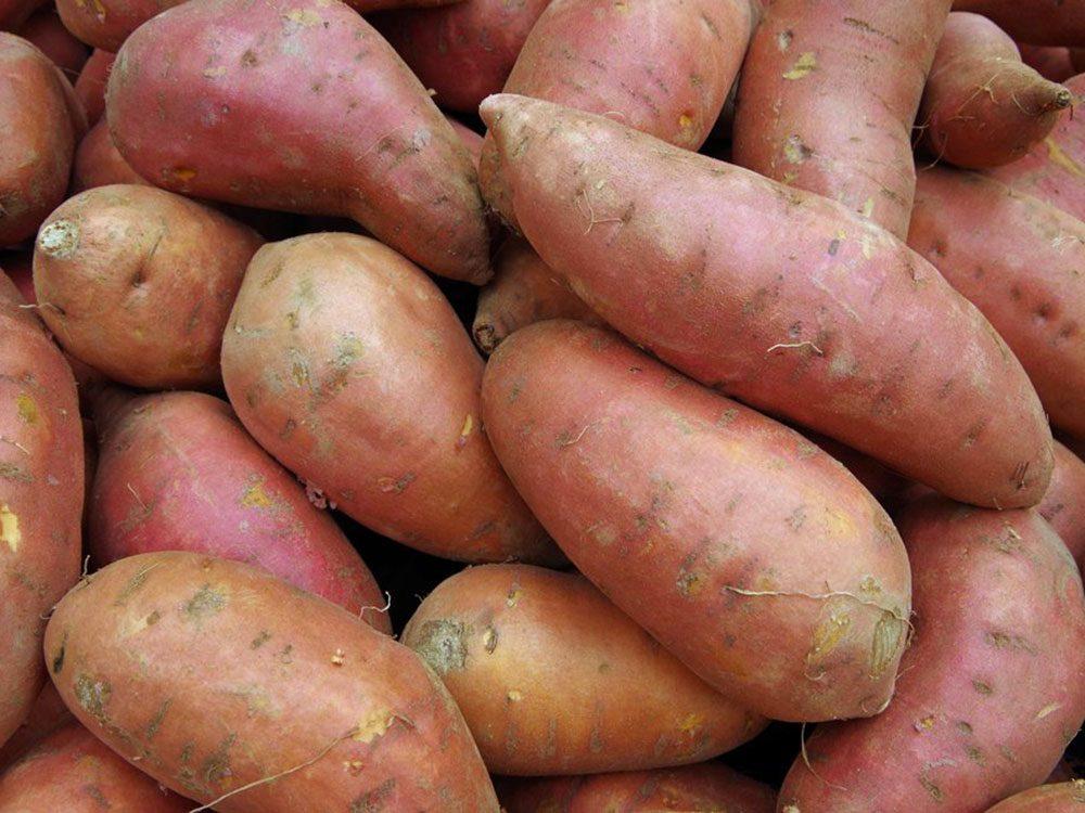 Les pommes de terre sont des aliments populaires maintenant, mais pas il y à 100 ans!