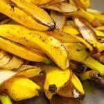 20 utilisations astucieuses des bananes (à part les manger)