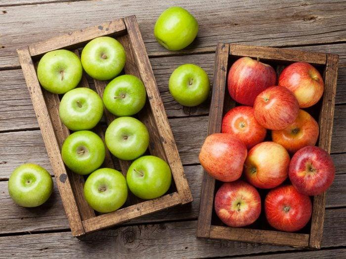 Votre chien peut manger des pommes.