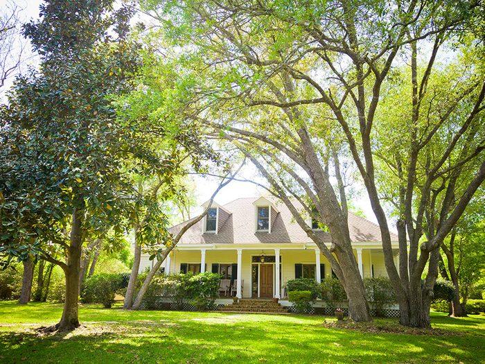 Un courtier immobilier ne plante pas d'arbres trop près de la maison.