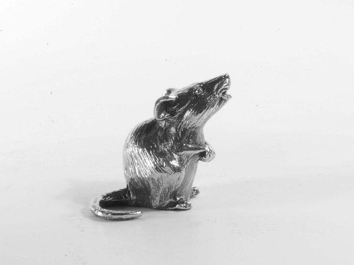 Dans l'horoscope chinois, 2020 est l'année du Rat de Métal.
