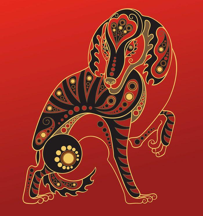 Le chien dans l'horoscope chinois.