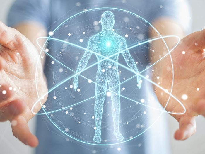 Chaque cellule de l'organisme contient votre métabolisme.