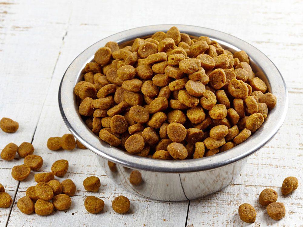 Le vétérinaire prévient: la nourriture chère ne signifie pas nécessairement qu'elle est bonne.
