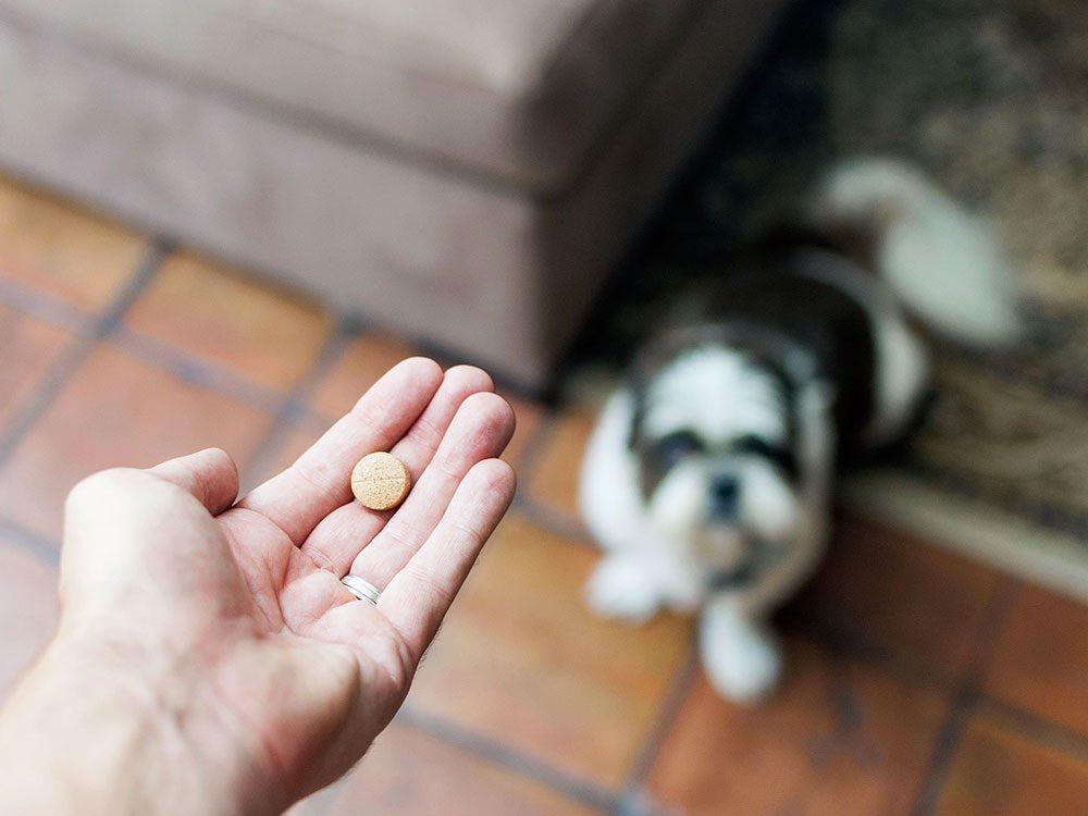 Certains médicaments vétérinaires ont un générique équivalent chez les humains.