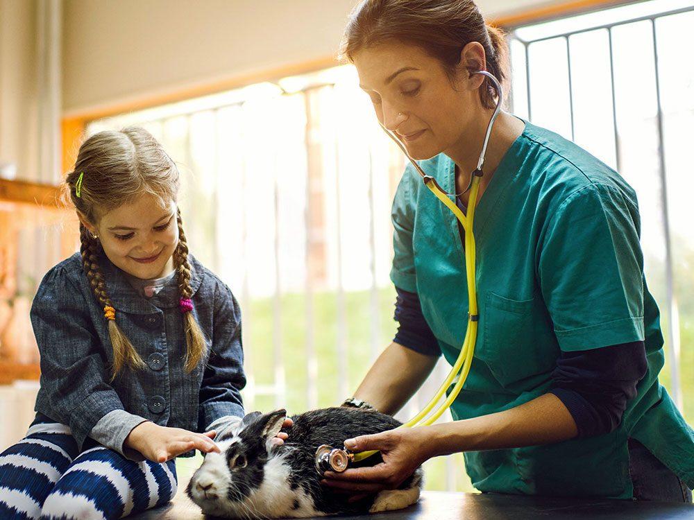 Le travail de vétérinaire n'est pas facile.