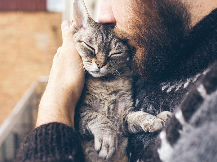 Comment choisir le bon chat d'intérieur?