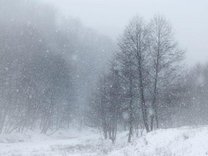 D'un coup, la tempête de neige arrive et surprend Westcott.