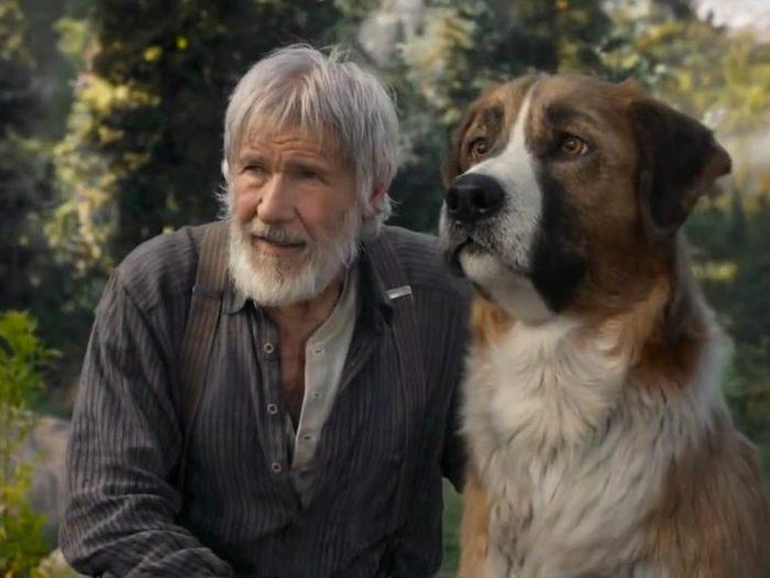 L'appel de la forêt est l'un des films et séries à voir en février 2020.