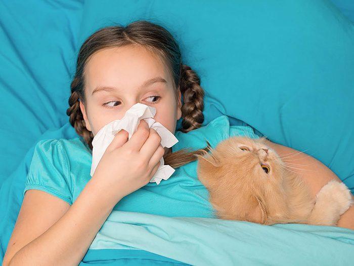 Dormir avec votre chat pourrait entrainer de l'asthme et des allergies.