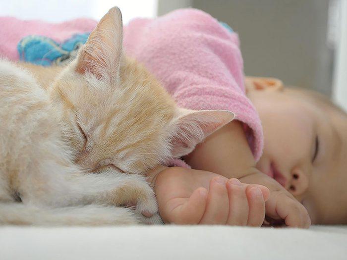 Les jeunes enfants ne doivent pas dormir avec un chat.