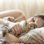 8 excellentes raisons de ne jamais dormir avec votre chat