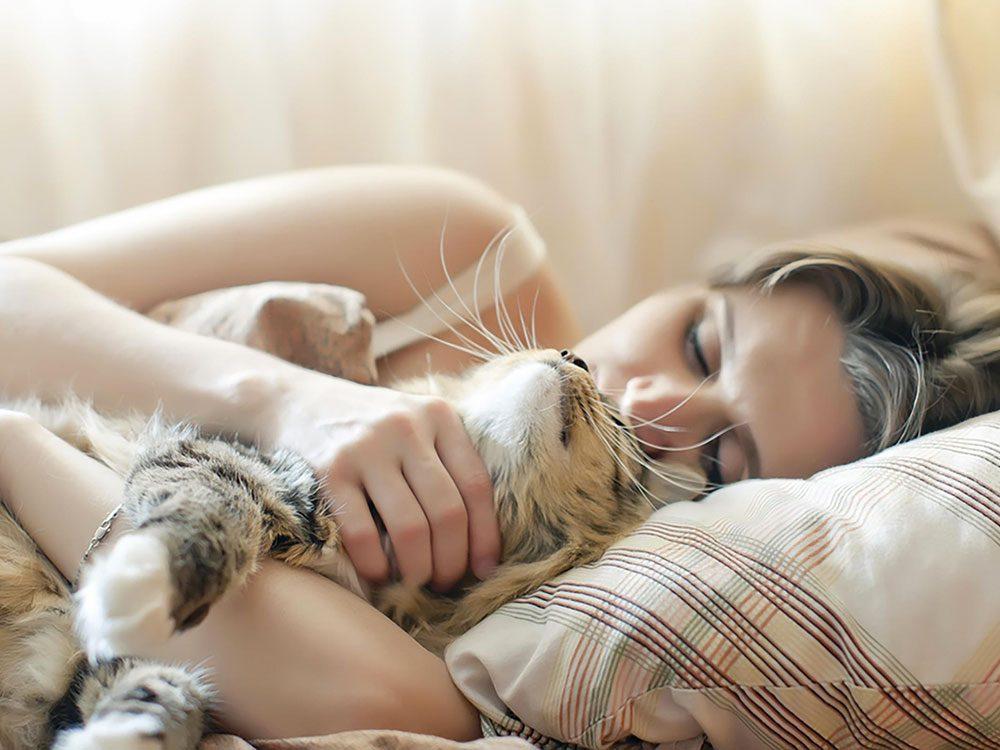 Les chats sont des êtres d'habitude et ils détestent tout changement affectant leur environnement.