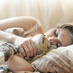 8 excellentes raisons de ne jamais dormir avec son chat