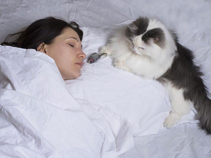 Dormir avec votre chat risque de perturber votre sommeil.