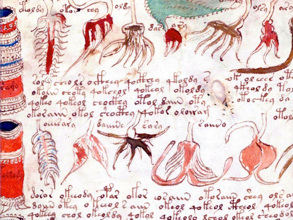 Le manuscrit Voynich reste un mystère, pour le moment.