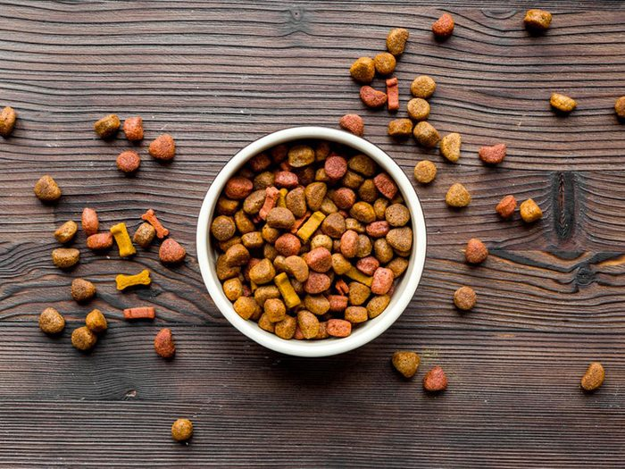 Attention aux colorants artificiels dans la nourriture pour animaux.