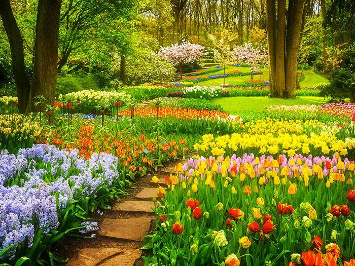 Le jardin de la vie conjugale.