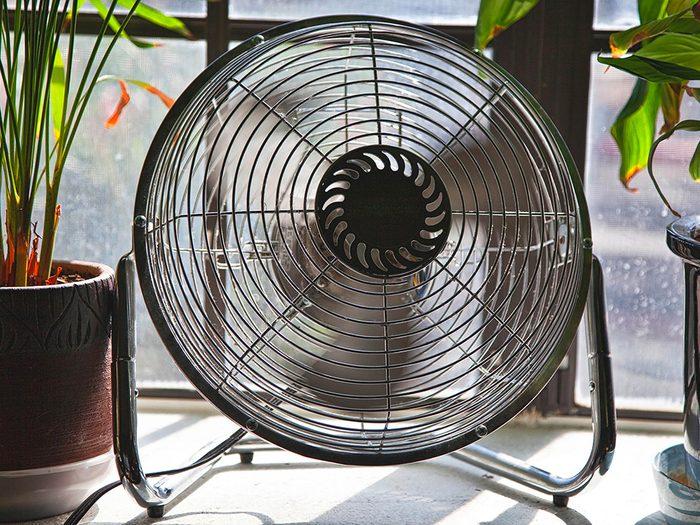 Une chaleur intense peut rendre n'importe qui irritable et joue sur l'anxiété.