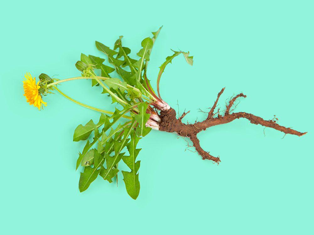 Les meilleures dates pour éliminer les parasites et les mauvaises herbes.