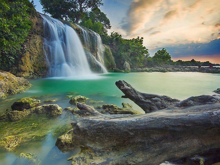 Les deux amis perdus dans la jungle se trouvaient dans une banlieue de Surabaya, en Indonésie.
