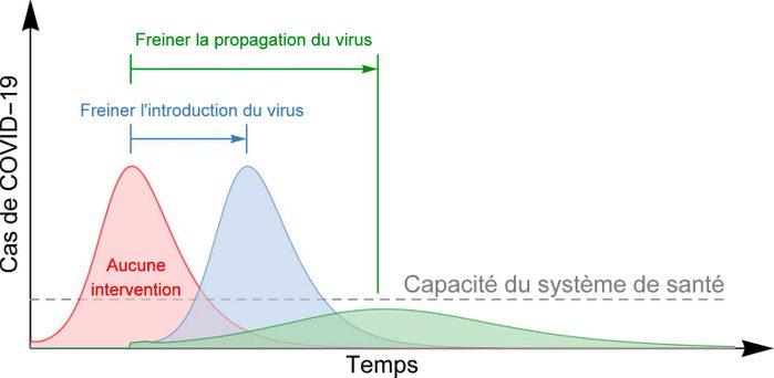 Les quatre phases de la COVID-19.