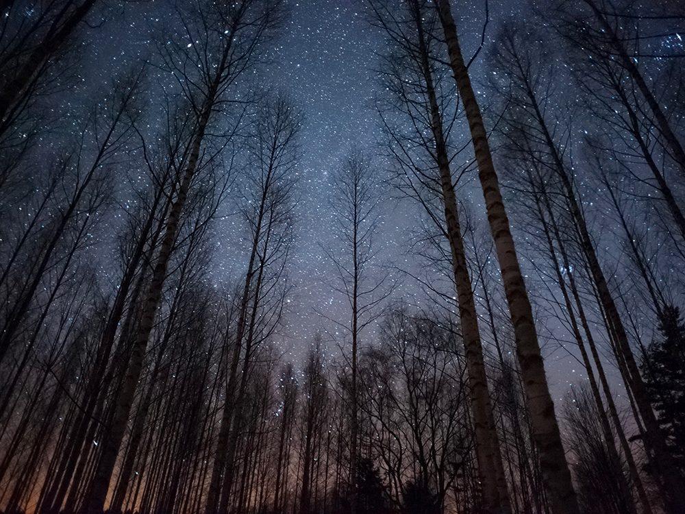 Confinés à la maison? Observez les étoiles.