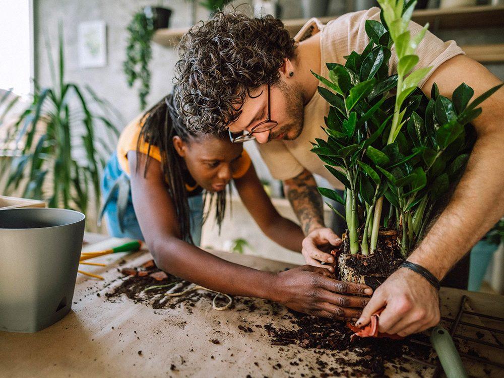 Confinés à la maison? Commencez le jardinage.