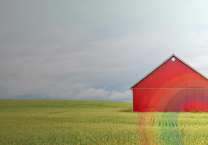 Le mouvement Mangeons local plus que jamais, lancé par Union des producteurs agricoles.