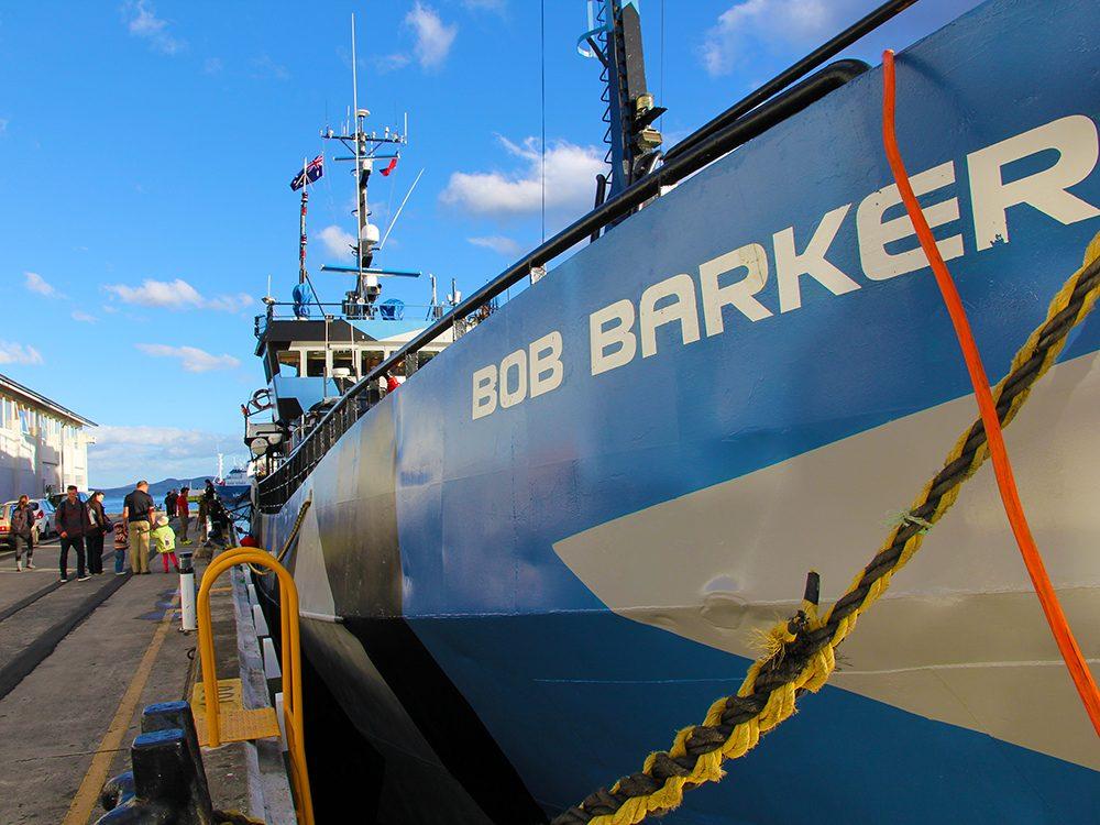 Bateaux de pêche: l'opération Icefish à bord du Bob Barker.