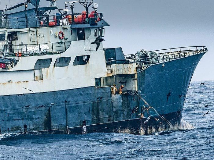 L'équipage du Thunder remonte ses filets de pêche non autorisée.