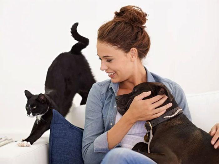 Quand chien ou chien vous montrent leur derrière de trop près.