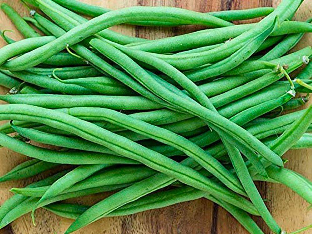 Les haricots sont faciles à cultiver.