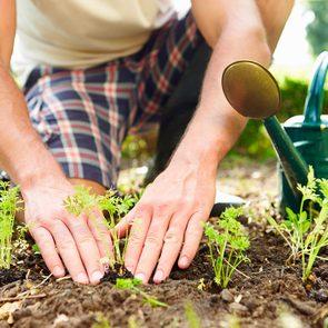 Le jardinage renforce votre système immunitaire.
