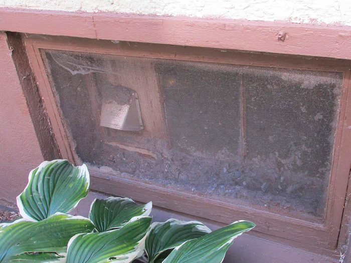 N'essayez pas cela à la maison: un réservoir à peluches.