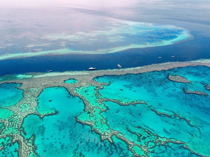 Les suppositions sur l'état de la Grande Barrière de corail.