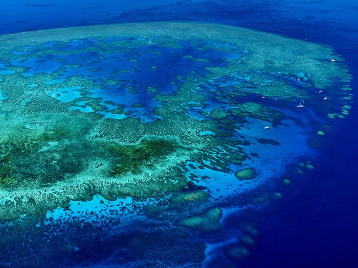 La Grande Barrière de corail est visible depuis l'orbite terrestre.